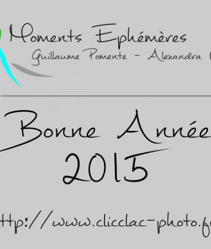 voeux_2015
